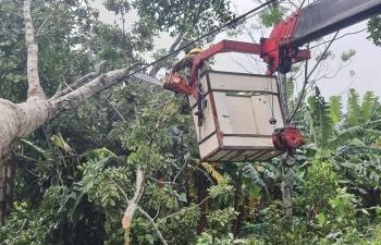 Điện lực Hương Sơn dồn sức khắc phục nhanh hậu quả hoàn lưu bão số 9