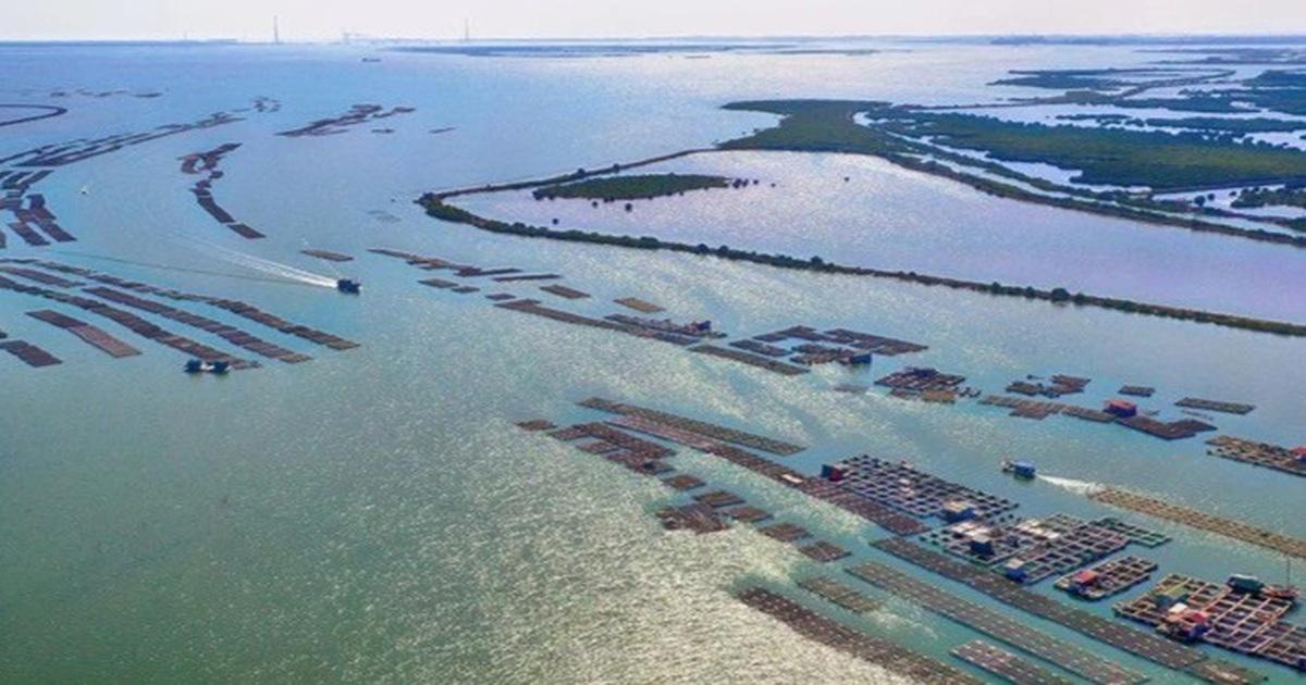 3 đại gia FDI muốn làm 2 dự án khu công nghiệp rộng nghìn ha ở Quảng Ninh