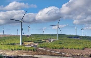 EVN: Thêm 5 nhà máy điện gió được cấp COD