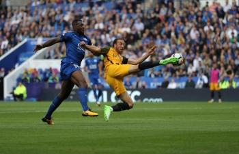 Link xem trực tiếp Brighton vs Leicester City (Ngoại hạng Anh), 22h ngày 23/11