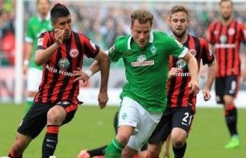 Link xem trực tiếp Frankfurt vs Wolfsburg (VĐ Đức), 21h30 ngày 23/11
