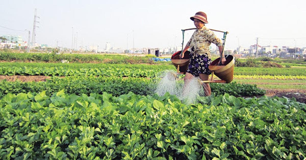 GS Trần Thọ Đạt: Nông dân Việt có thể bị bỏ rơi trong nền kinh tế số hóa