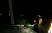 Thợ điện qua những cơn bão