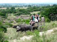 """Trải nghiệm """"homestay"""" cùng cộng đồng người Chăm Ninh Thuận"""