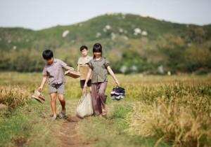 """Phú Yên và """"Tôi thấy hoa vàng trên cỏ xanh"""""""