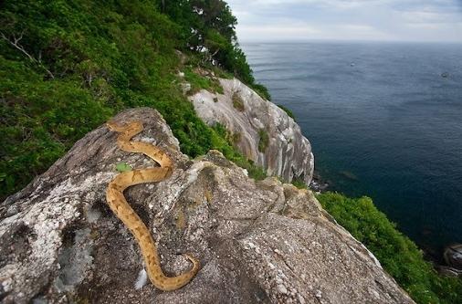 """""""Lạnh sống lưng"""" ở 6 hòn đảo đáng sợ nhất thế giới"""