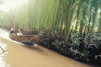 Đến cầu Rạch Miễu, hưởng ngoạn hai ốc đảo xanh mướt trên sông Tiền