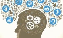 Bộ não con người vẫn mãi là ẩn số