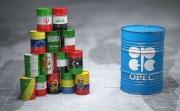 OPEC giữ nguyên dự báo về nhu cầu dầu bất chấp diễn biến dịch Covid-19