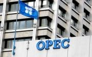 OPEC bơm dầu mức cao nhất kể từ tháng 4/2020