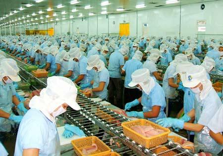 Pháp luật không bảo vệ người lao động… bất chính