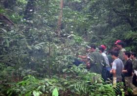 Quảng Bình: Xác định nghi can giết 5 phu trầm