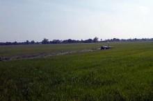 Vụ máy bay L39 rơi: Thủ tướng gửi công điện khẩn