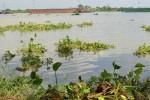 Phát hiện thi thể bé gái 3 tuổi trên sông Sài Gòn