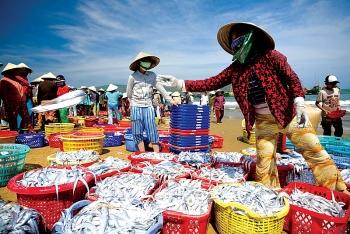 Phòng dịch corona, sẽ thắt chặt kiểm tra hải sản, động vật nhập khẩu