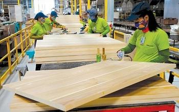 Mỹ là nhà cung cấp và tiêu thụ lớn nhất của ngành chế biến gỗ Việt Nam