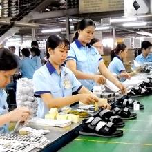 5 thị trường trong khối CPTPP Việt Nam xuất siêu là những nước nào?