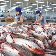 10 doanh nghiệp Việt vượt rào thuế chống phá giá cá basa của Mỹ