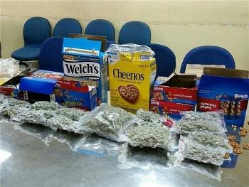 Bắt giữ nhiều vụ vận chuyển ma túy trong tháng 10