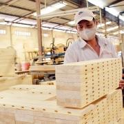 Xuất khẩu gỗ và sản phẩm gỗ tăng mạnh, đạt gần 9,5 tỷ USD trong 11 tháng
