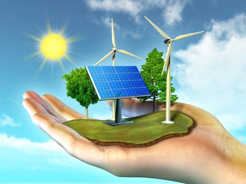 Bản tin năng lượng xanh