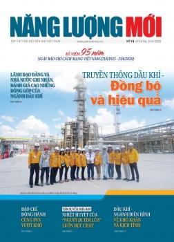 Tạp chí Năng lượng mới - Số 11
