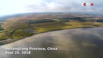 """Chủ tịch Trung Quốc Tập Cận Bình đi theo """"con đường"""" Mao Trạch Đông"""